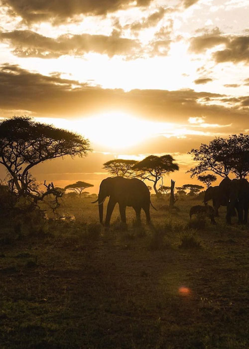 Best-Time-To-Visit-South-Africa