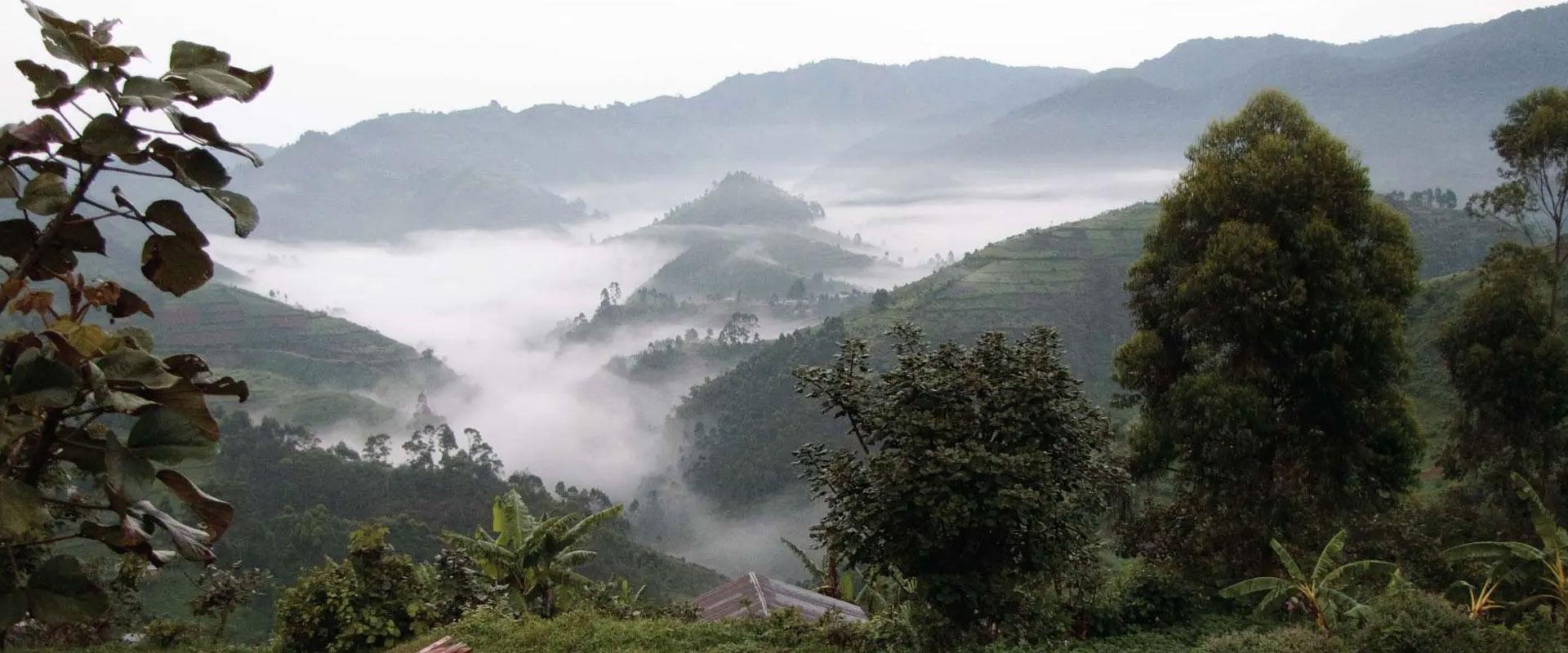 Best-Time-To-Visit-Uganda