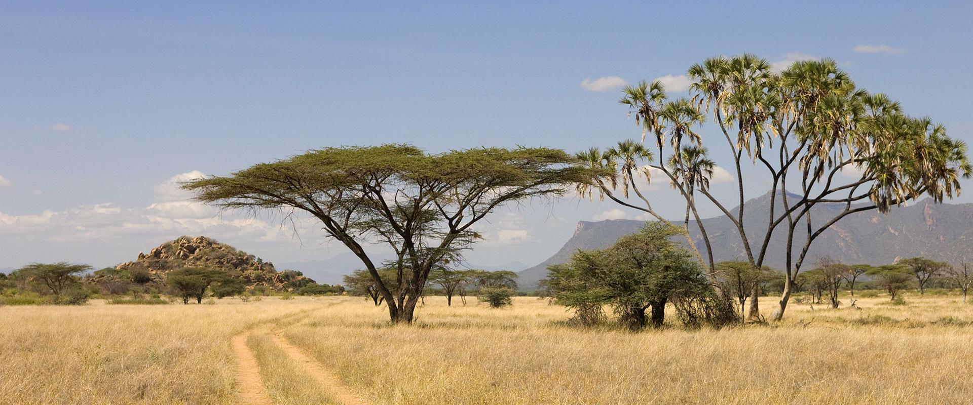 Kenya At A Glance