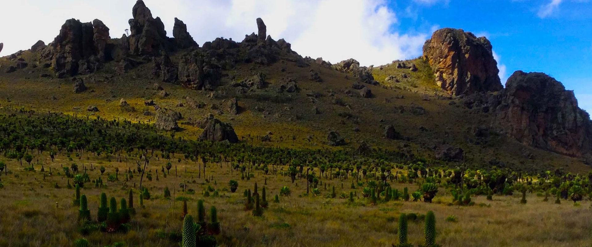 Mount Elgon Hike