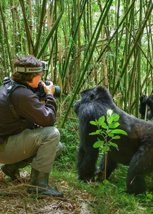 Rwanda Safari Activities