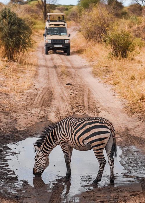 Tanzania At A Glance