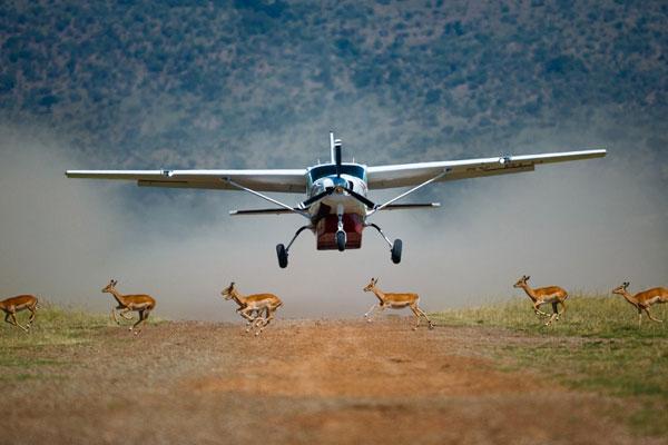 Uganda Gorilla Safari Fly-In